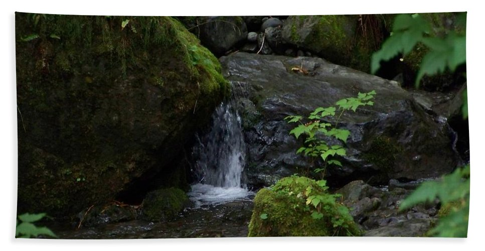 Digital Photography Bath Sheet featuring the photograph Quinault Washington Rain Forest by Laurie Kidd