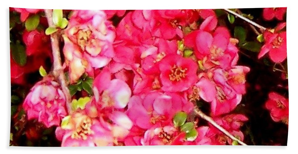 Quince Bath Sheet featuring the photograph Quince by Linda Chambers