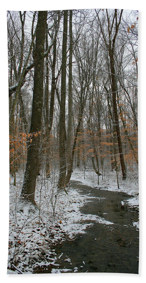 Forest Woods Water Winter Tree Snow Cold Season Nature Hand Towel featuring the photograph Quite Path by Andrei Shliakhau