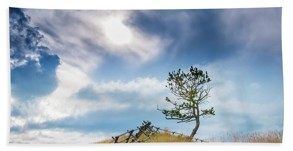2018-07-28 Hand Towel featuring the photograph Rail Fence And A Tree by Philip Rispin
