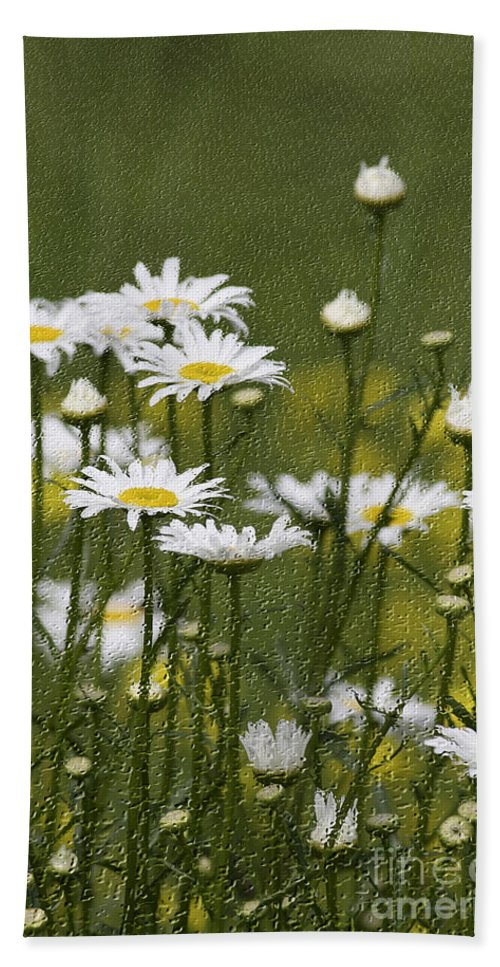 Craquelure Hand Towel featuring the photograph Rain Drops On Daisies by Deborah Benoit