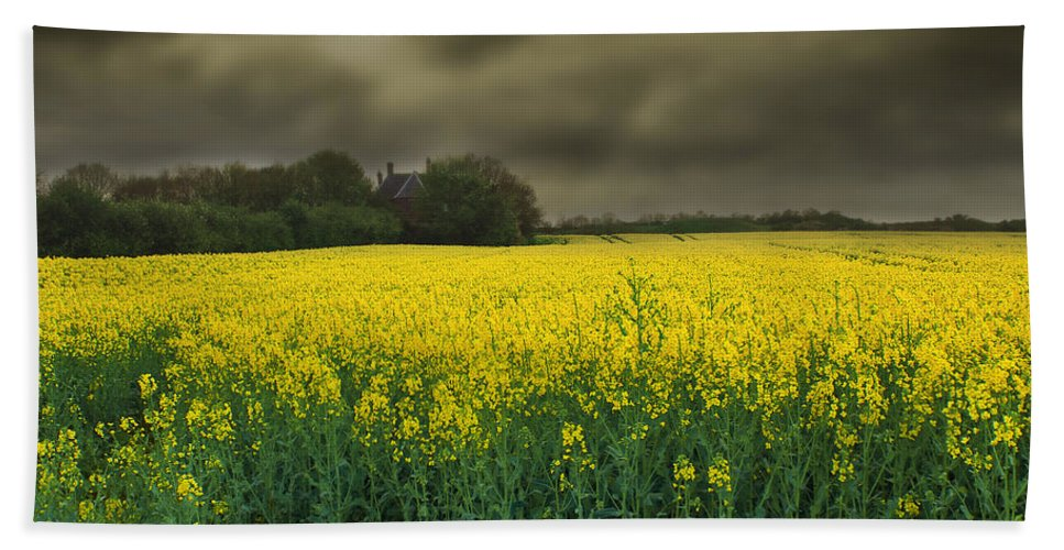 Beautiful Hand Towel featuring the photograph Rain Is On Its Way by Svetlana Sewell