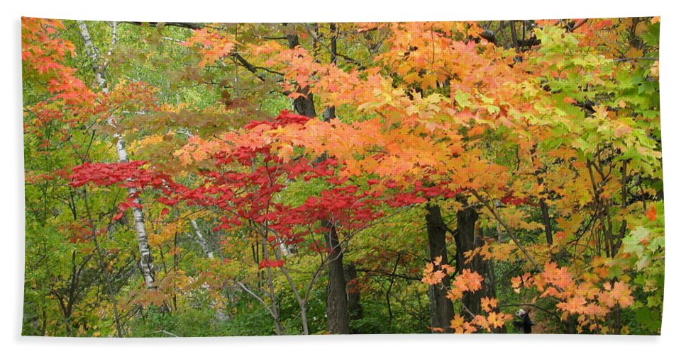 Fall Hand Towel featuring the photograph Rainbow by Kelly Mezzapelle