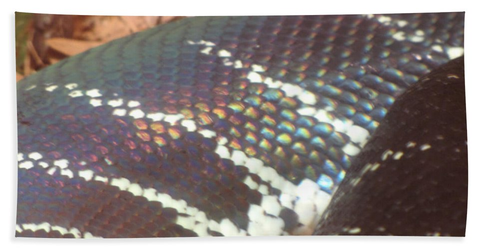 Snake Hand Towel featuring the photograph Rainbow Scales by Sarah Houser