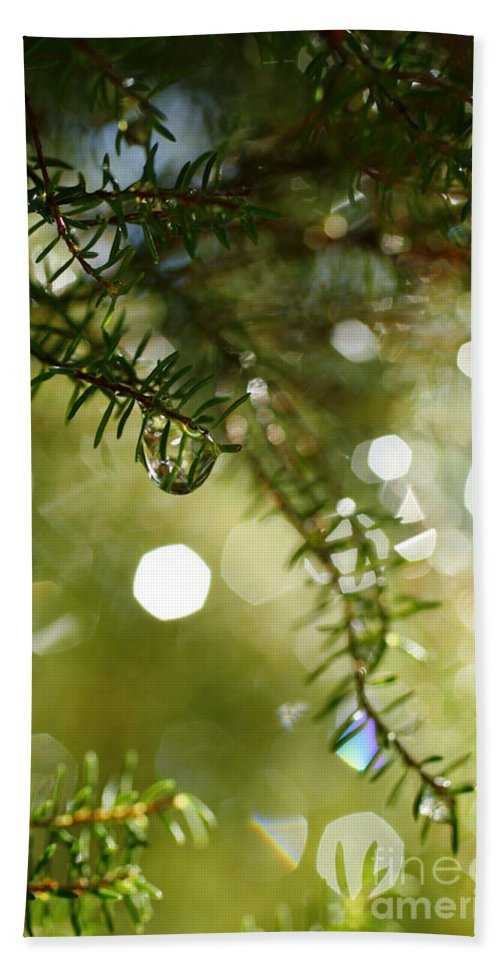 Dew Hand Towel featuring the photograph Raindrops by Gaspar Avila