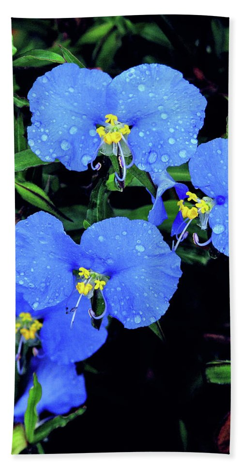 Nature Bath Sheet featuring the photograph Raindrops In Blue by Peg Urban