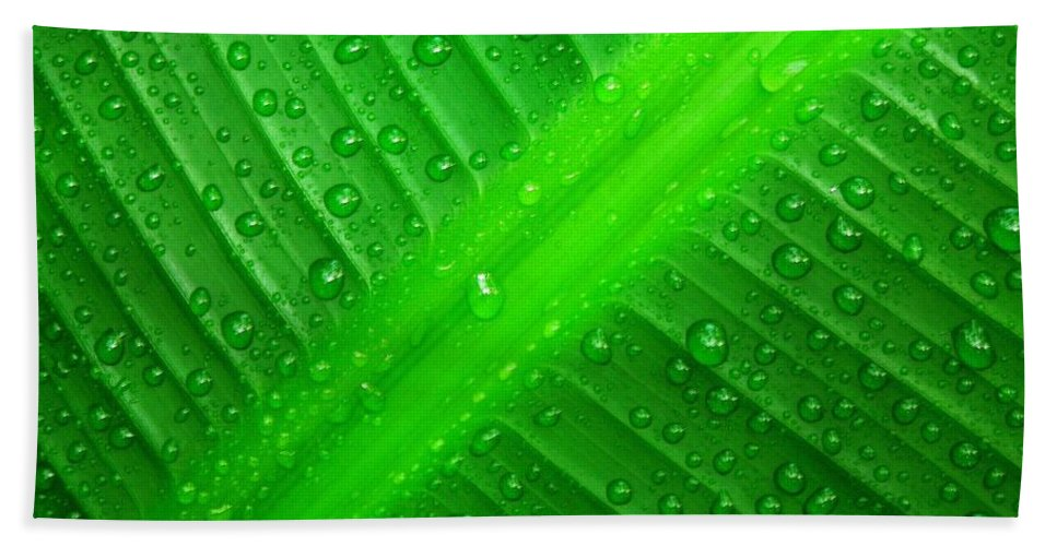 Nature Hand Towel featuring the photograph Raindrops ... by Juergen Weiss