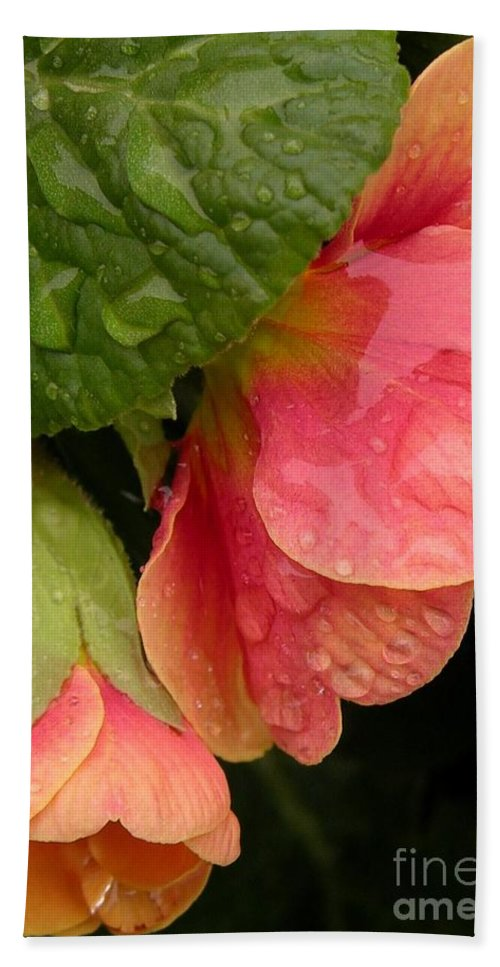 Floral Hand Towel featuring the photograph Raindrops On Coral Flowers by Carol Groenen