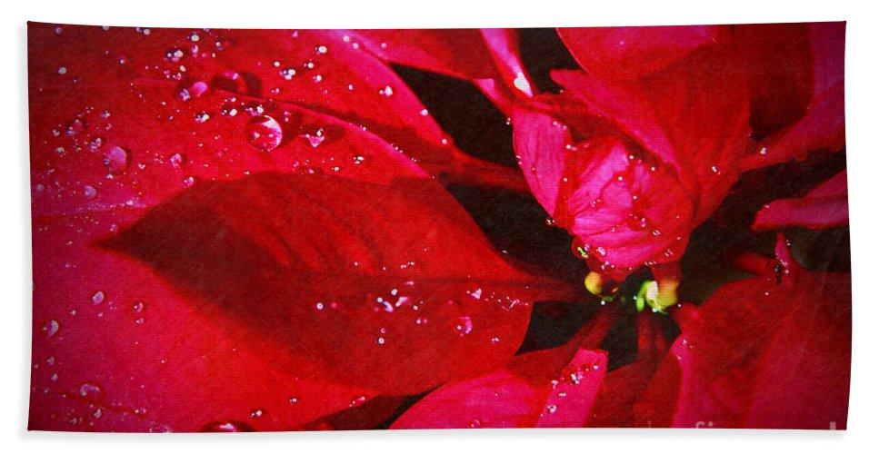 Raindrops On Red Poinsettia Bath Sheet featuring the photograph Raindrops On Red Poinsettia by Mariola Bitner