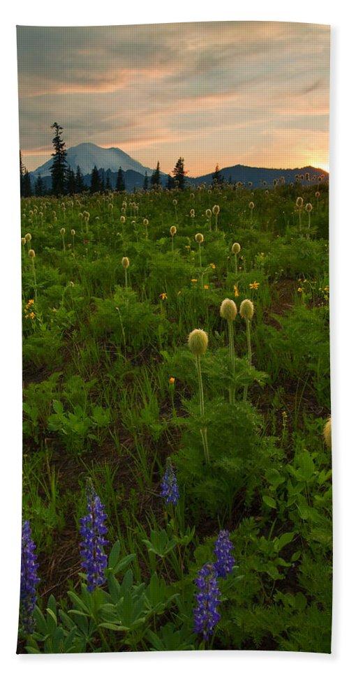 Meadow Bath Towel featuring the photograph Rainier Wildflower Light by Mike Dawson