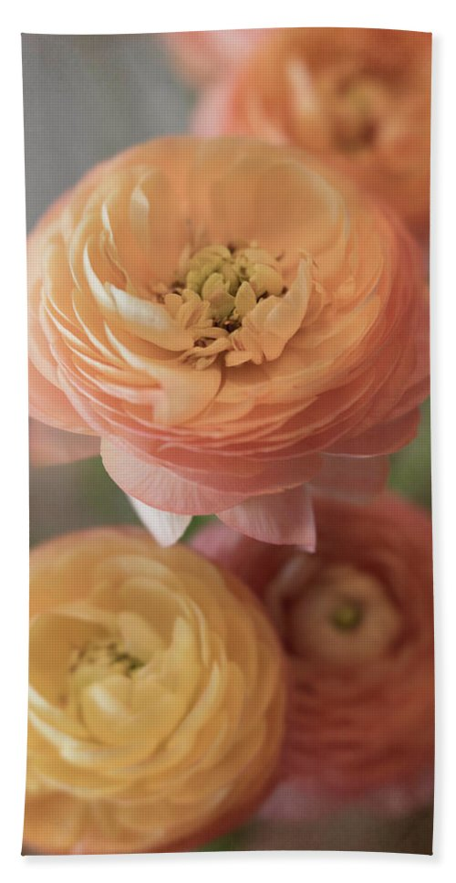 Ranunculus Bath Sheet featuring the photograph Ranunculus - 6296 by Teresa Wilson