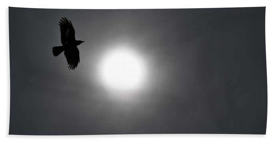 Crow Hand Towel featuring the photograph Raven Circling The Sun by John Trax