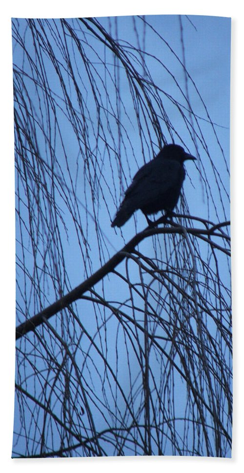 Raven Hand Towel featuring the photograph Raven by Heather Lennox