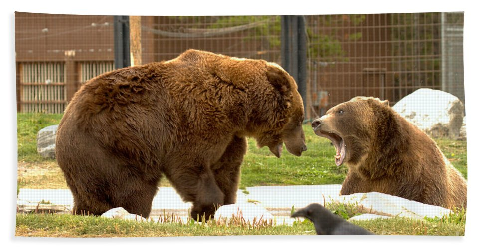 Grizzly Bears Bath Towel featuring the photograph Raven Watching The Brawl by Adam Jewell