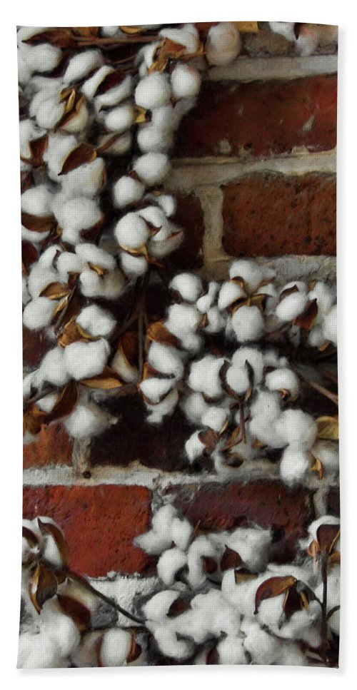 Cotton Bath Sheet featuring the photograph Raw Cotton by JAMART Photography
