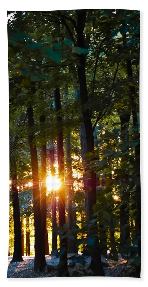 Sun Hand Towel featuring the digital art Rays Of Dawn by DigiArt Diaries by Vicky B Fuller