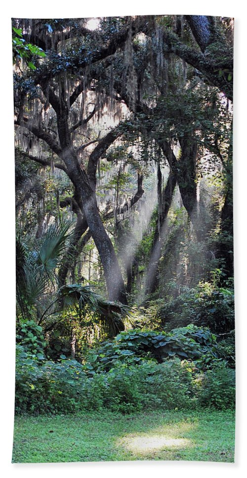 Rays Of Sunlight Hand Towel featuring the photograph Rays Of Sunlight by Robert Meanor