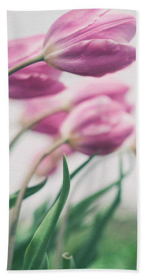 Tulip Bath Sheet featuring the photograph Reach by Angela King-Jones