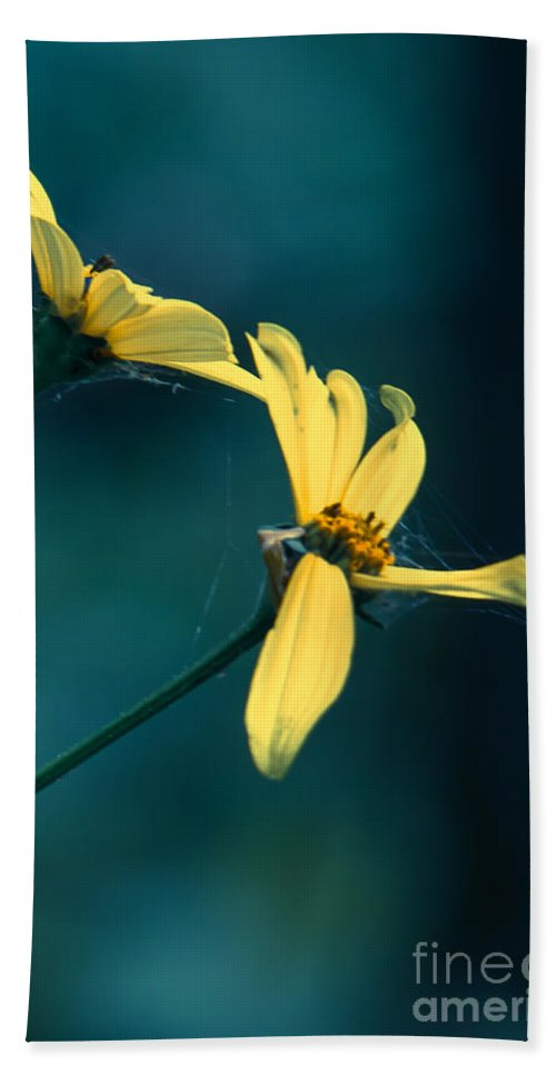 Wildflowers Hand Towel featuring the photograph Reaching Out by Kristin Hunt