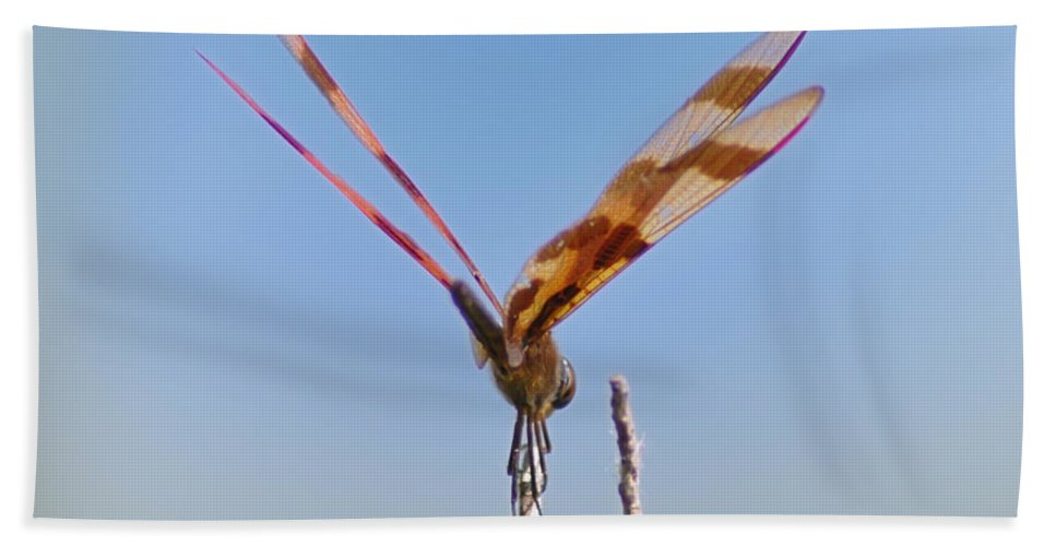 Dragonfly Bath Sheet featuring the photograph Ready For Take Off by Bill Cannon