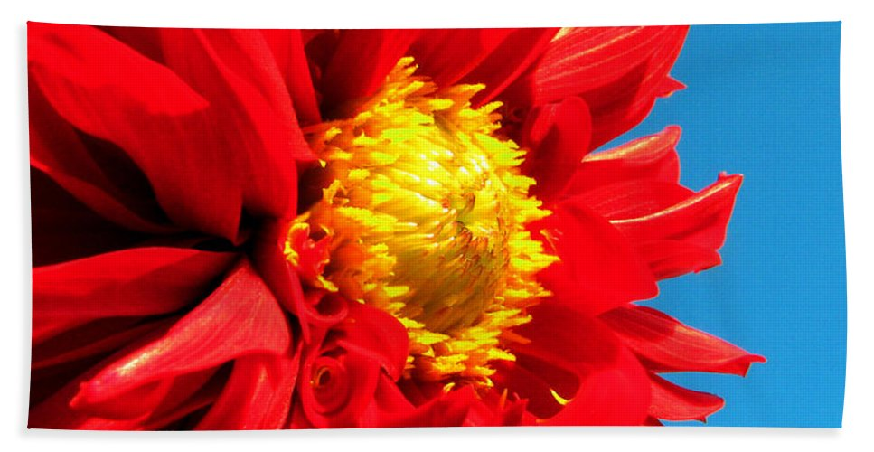 Dhalia Hand Towel featuring the photograph Ready For The Future by Amanda Barcon