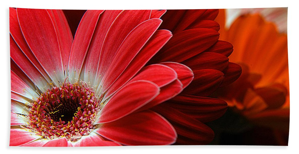 Clay Bath Towel featuring the photograph Red And Orange Florals by Clayton Bruster