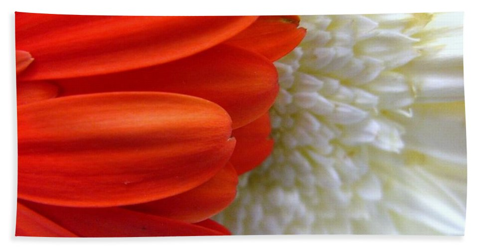 Flowers Bath Towel featuring the photograph Red And White by Rhonda Barrett