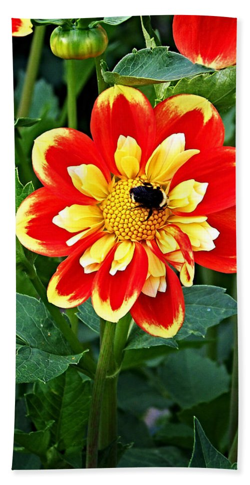 Flower Bath Towel featuring the photograph Red And Yellow Flower With Bee by Anthony Jones