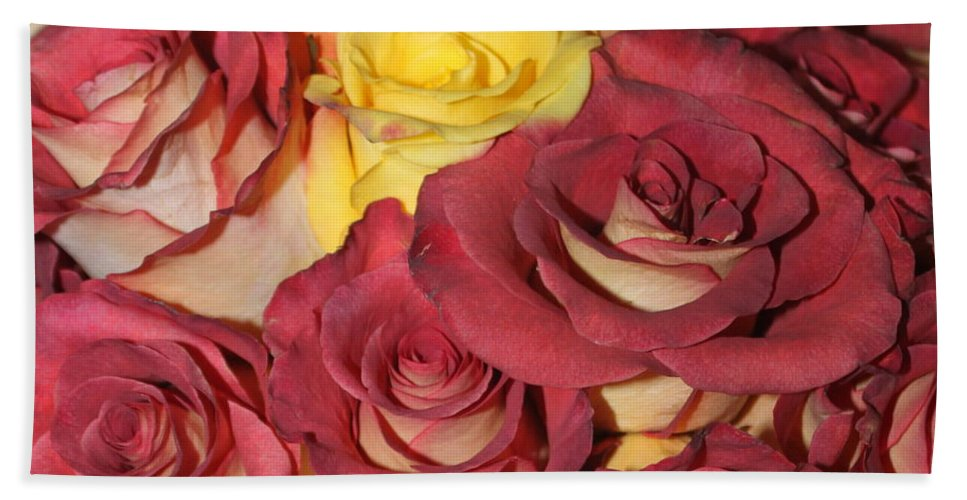 Rose Bath Sheet featuring the photograph Red And Yellow Roses by Lauri Novak