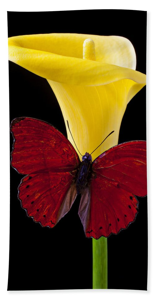 Red Butterfly Bath Towel featuring the photograph Red Butterfly And Calla Lily by Garry Gay