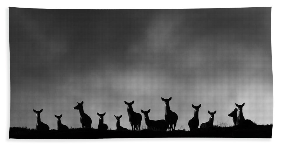 Red Deer Group Bath Sheet featuring the photograph Red Deer On The Hill by Gavin Macrae