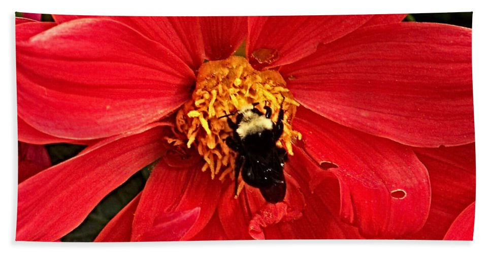 Flower Bath Sheet featuring the photograph Red Flower And Bee by Anthony Jones