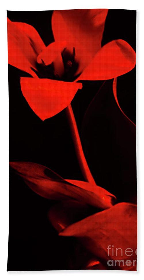 Red Flower Bath Sheet featuring the photograph Love For Red Flower #1. by Alexander Vinogradov