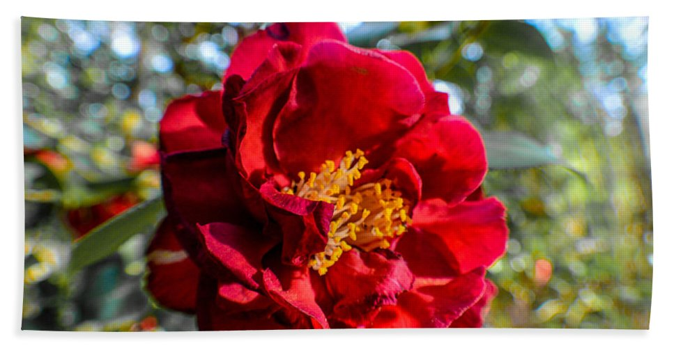 Red Bath Sheet featuring the photograph Red Flower by Miranda Strapason