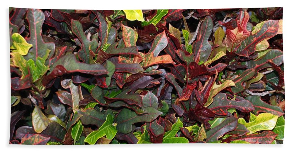 Macro Bath Towel featuring the photograph Red Green Leaves by Rob Hans