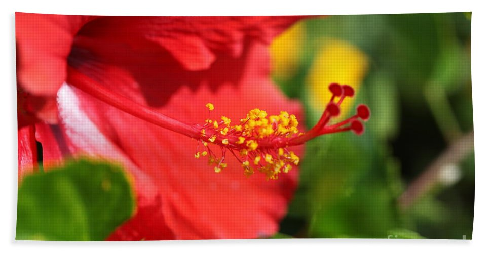 Flowers Hand Towel featuring the photograph Red Hibiscus And Green by Nadine Rippelmeyer