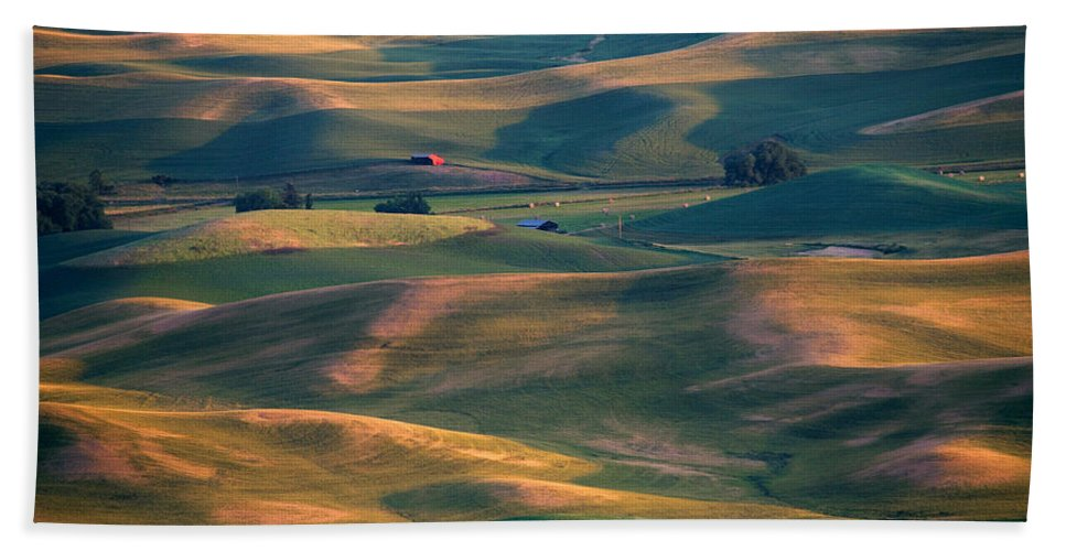 Barn Bath Sheet featuring the photograph Red In A Sea Of Green by Mike Dawson