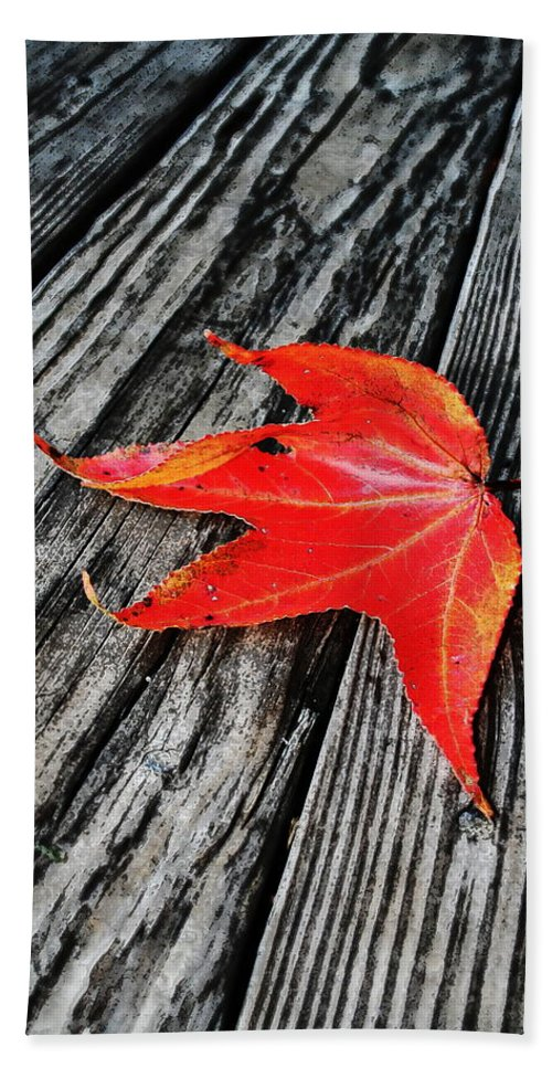 Nature Bath Towel featuring the photograph Red Leaf by Linda Sannuti
