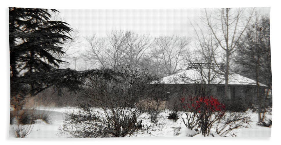 Photograph Bath Sheet featuring the photograph Red Leaves On White Snow by Alana Ripley