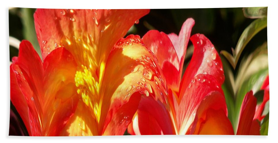 Flowers Bath Sheet featuring the photograph Red N Yellow Flowers 2 by Tim Allen