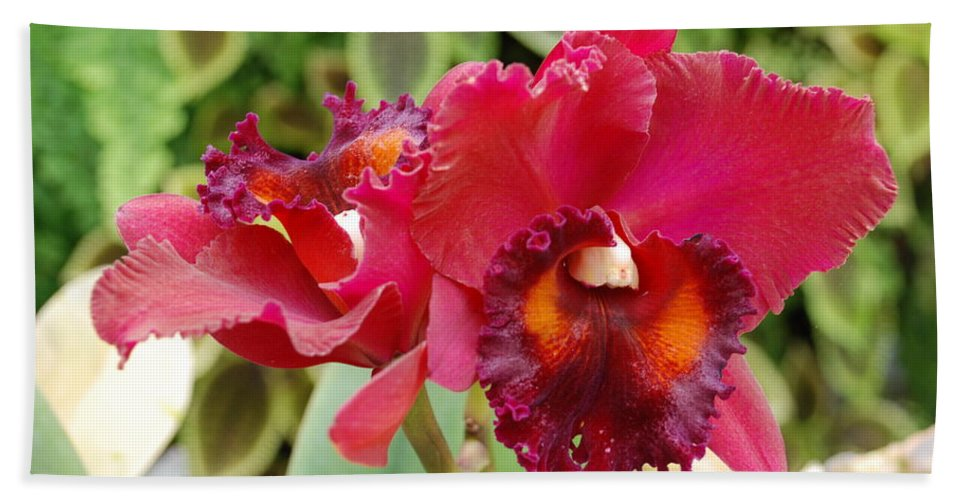 Macro Bath Towel featuring the photograph Red Orchid by Rob Hans