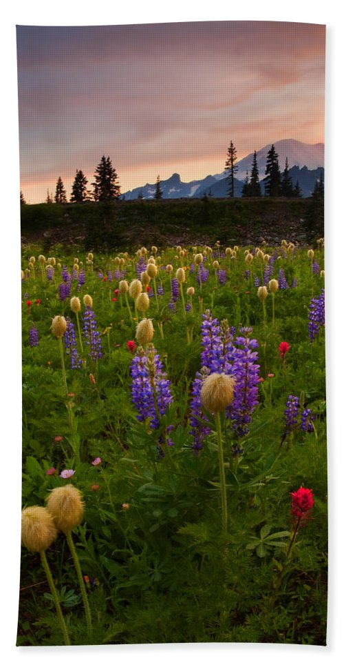 Anenome Bath Towel featuring the photograph Red Sky Meadow by Mike Dawson
