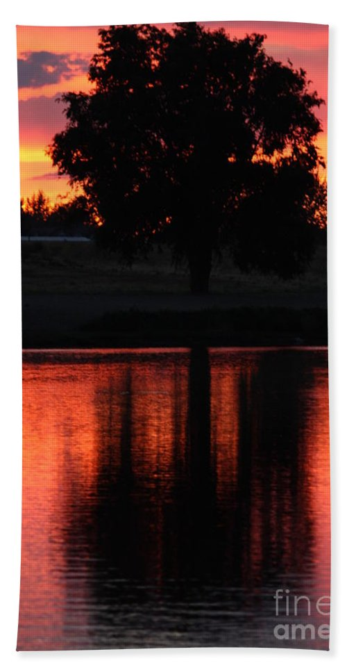 Sunset Bath Sheet featuring the photograph Red Sky Reflection With Tree by Carol Groenen