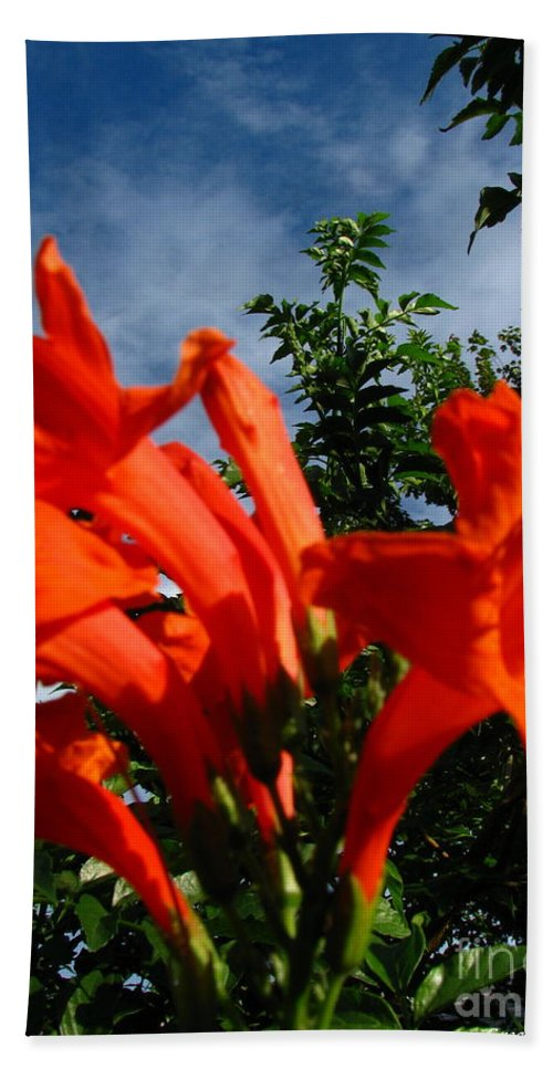 Patzer Bath Sheet featuring the photograph Red Trumpeter by Greg Patzer