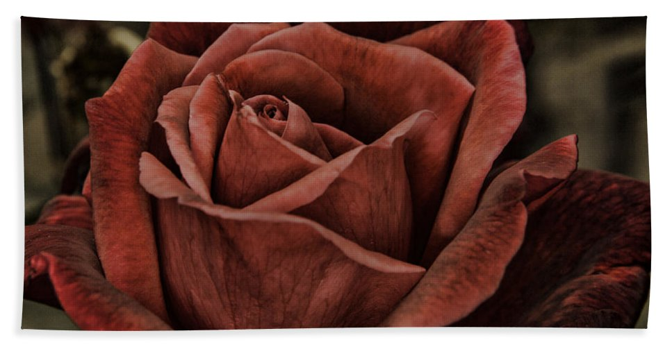 Anniversary Hand Towel featuring the photograph Red Velvet by Pete Federico