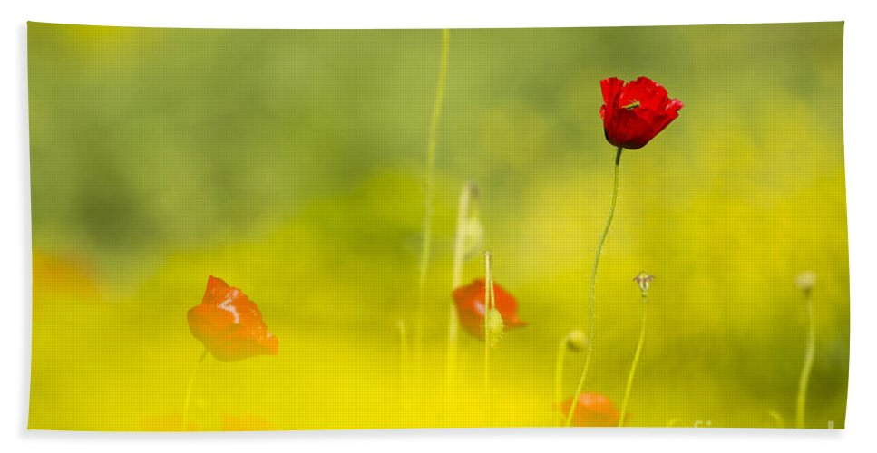 Yellow Bath Sheet featuring the photograph Red Wild Poppies by Alon Meir