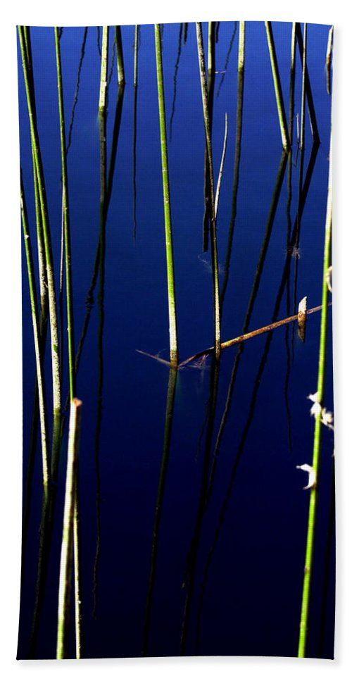Water Reeds Hand Towel featuring the photograph Reeds Of Reflection by Chris Brannen