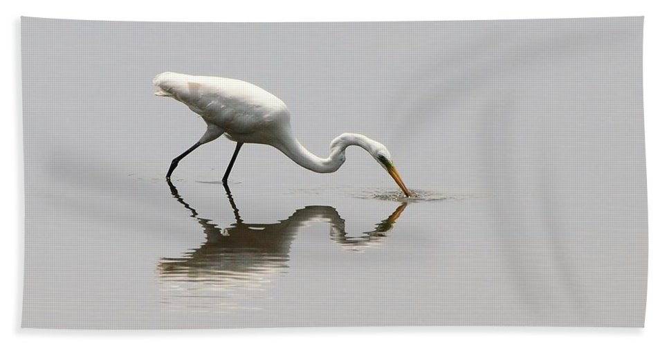 Great Egret Bath Sheet featuring the photograph Reflecting Egret by Al Powell Photography USA