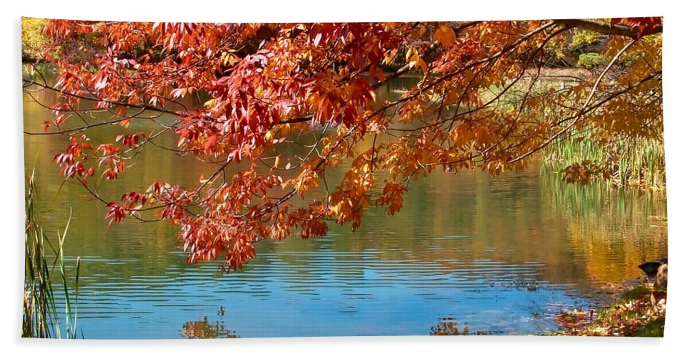 Lake Hand Towel featuring the photograph Reflection In The Lake by Karin Everhart