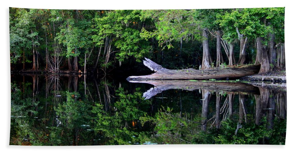 Reflection Bath Sheet featuring the photograph Reflection Off The Withlacoochee River by Barbara Bowen